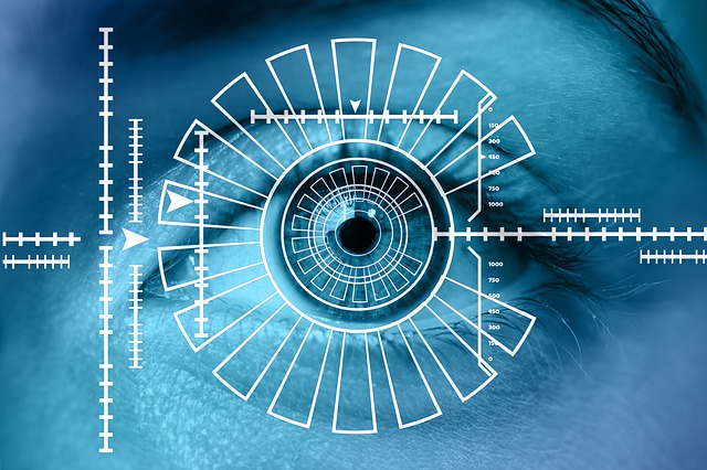 Is Biometrics a Good Idea for Protecting your Identity?