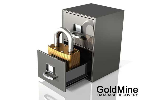 Goldmine Database Data Recovery